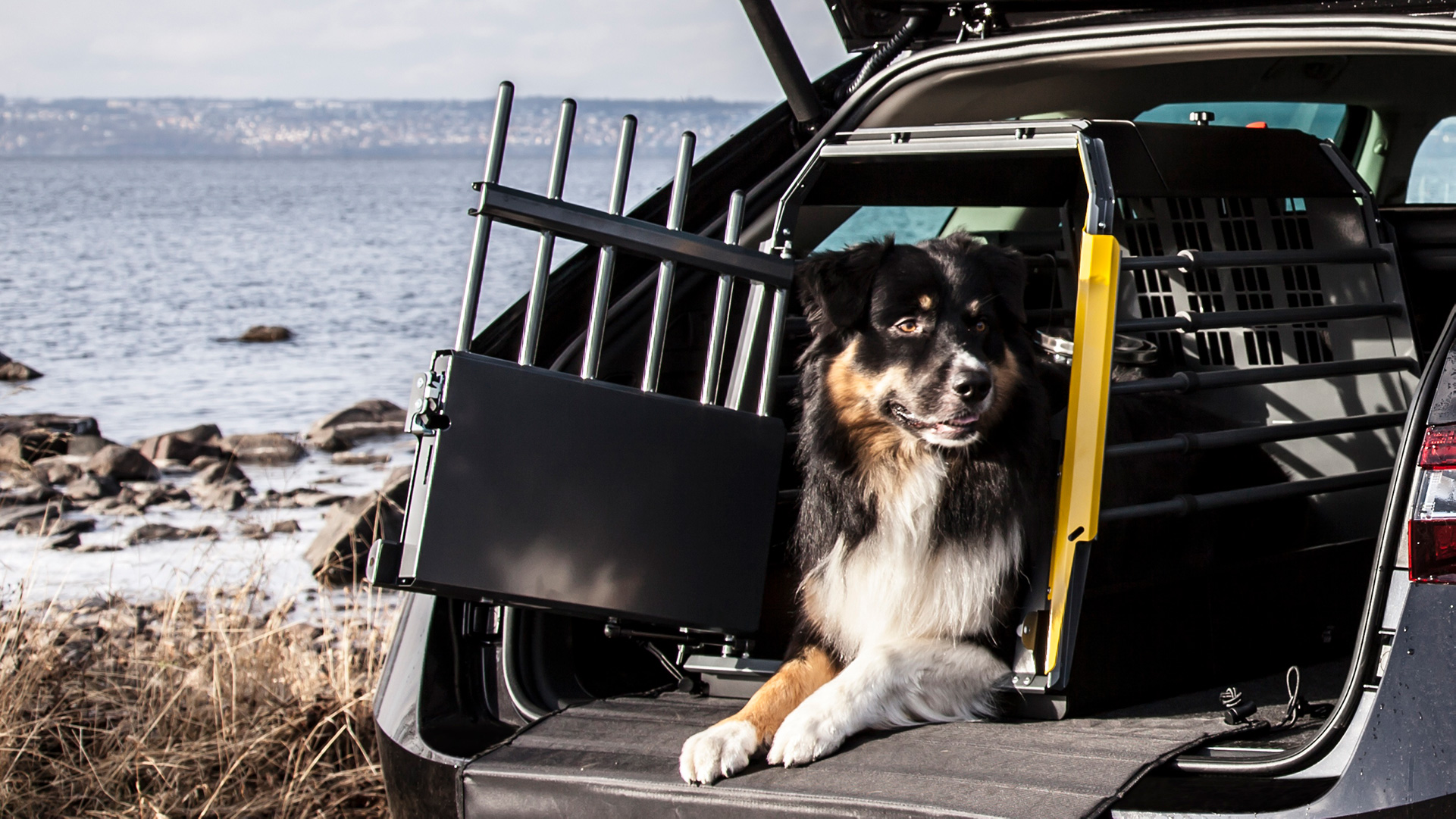 Hundburar Variocage från MIMsafe